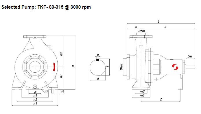 Bản vẽ củamáy bơm chữa cháy trục ngang Sempa TKF-80-315