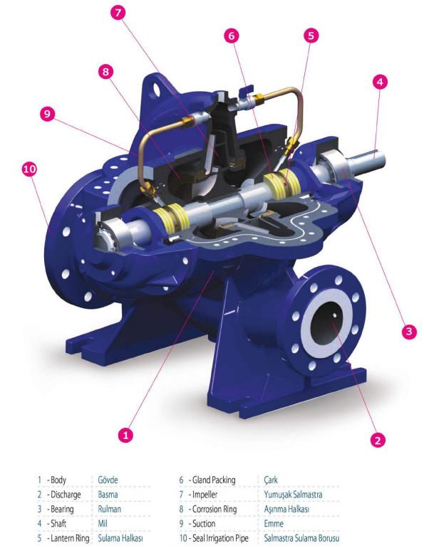 Cấu tạo của máy bơm nước ly tâm hút đôi Sempa SCE 125-315