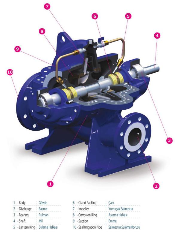 Cấu tạo của máy bơm nước ly tâm hút đôi Sempa SCE 65-250