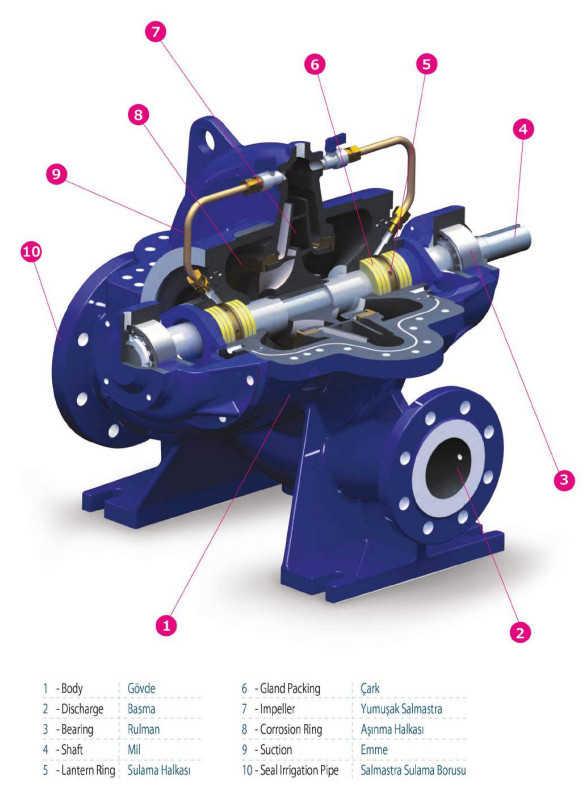 Cấu tạo của máy bơm ly tâm hút đôi Sempa SCE 300-700