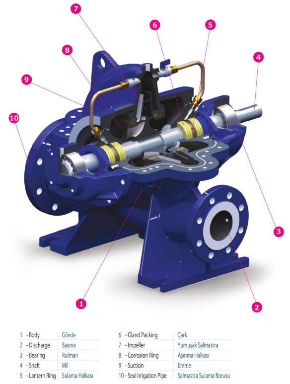 Cấu tạo của máy bơm ly tâm hút đôi Sempa SCE 350-500